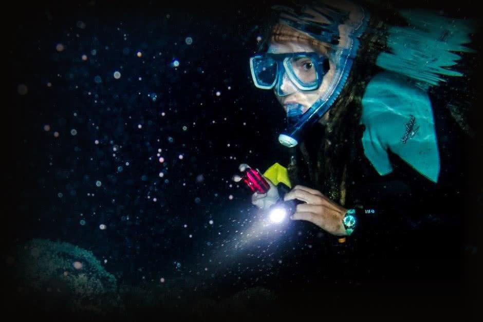 Night snorkel tour